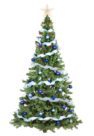 christmas backgrounds: Christmas Tree. Over white background