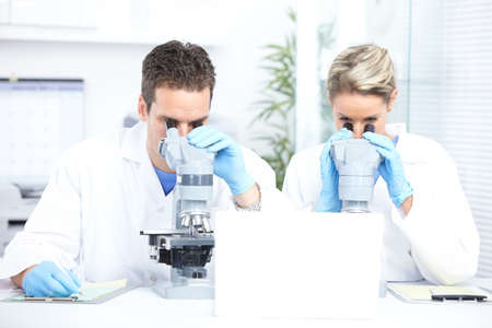 Science team working with microscopes in a laboratory Stock Photo - 8738163