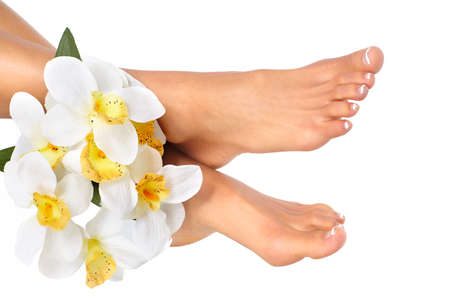 Female feet and flower. Isolated over white background   photo
