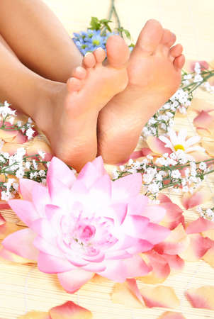 Female feet and flowers  photo