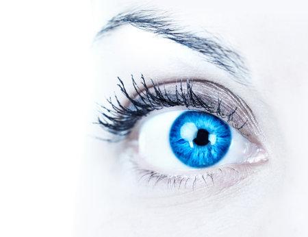 globo ocular: Ojo azul de mujer. Sobre fondo blanco
