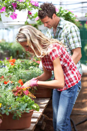 Gardening. Young smiling people florists working in the garden.   photo