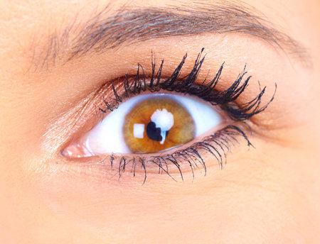 close up eyes: woman eye. Close up, macro