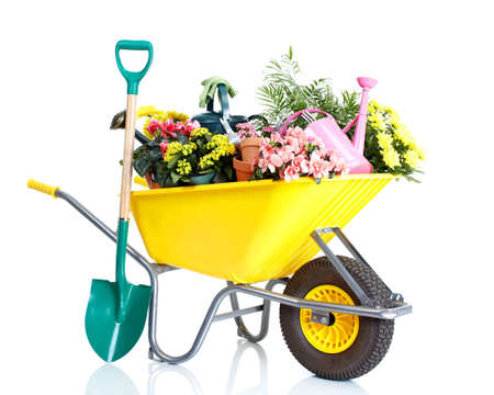 gardening tools: Gardening Stock Photo