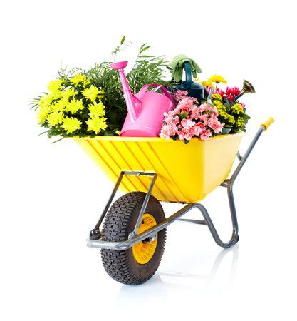 Gardening Standard-Bild