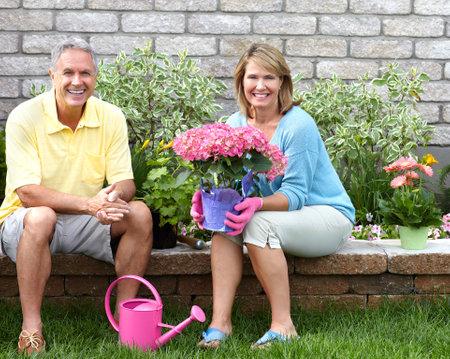 seniors gardening Banco de Imagens