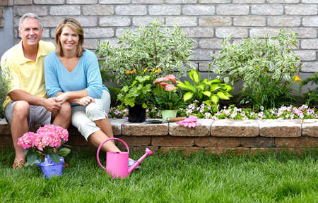 home garden: seniors gardening Stock Photo