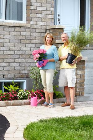 Senior couple with plant. Gardening Stock Photo - 9130199
