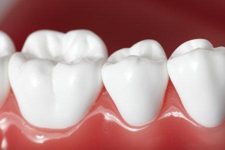 Teeth Stok Fotoğraf - 9407041