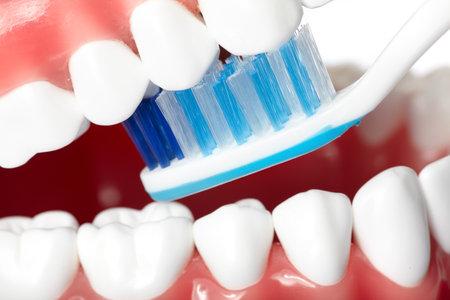 Teeth Stok Fotoğraf - 9407039