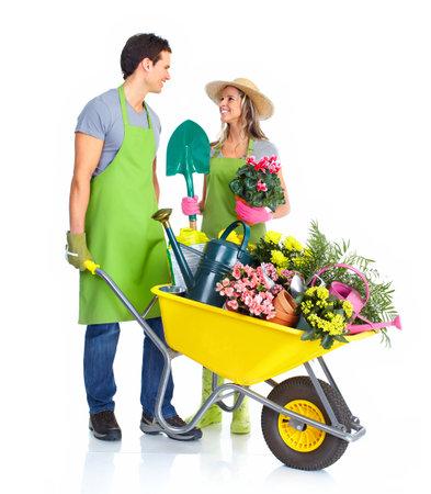 schubkarre: Gartenarbeit