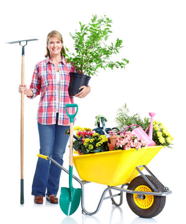 barrow: Gardening woman. Stock Photo