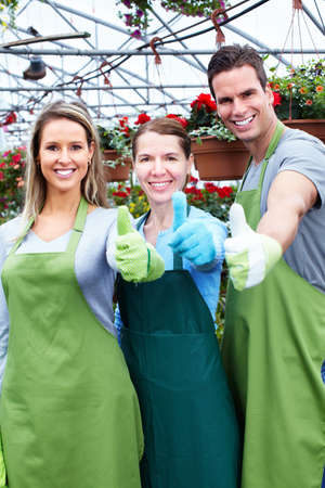 Florists working at flower shop. photo