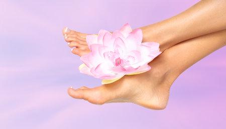 jolie pieds: Pieds de femme avec une fleur Banque d'images