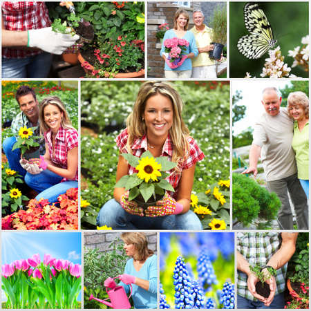 Gardening couple with flower  photo