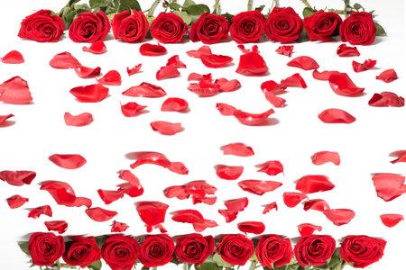 wedding band: Red rose