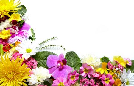 bordure de page: Floral carte de voeux avec de belles fleurs