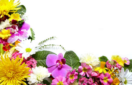 page up: Floral greeting card with beautiful flowers