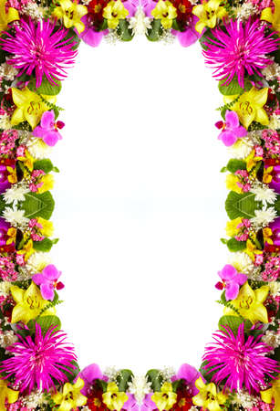 Floral greeting card with beautiful flowers  photo