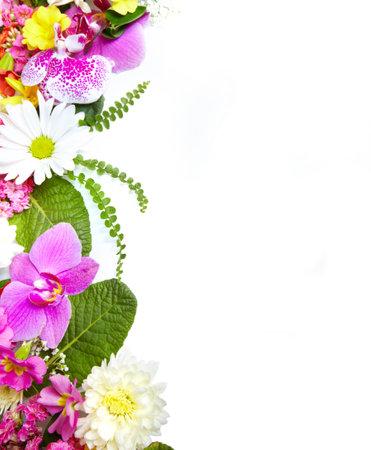 borde de flores: Tarjeta de felicitaci�n floral con las flores hermosas Foto de archivo