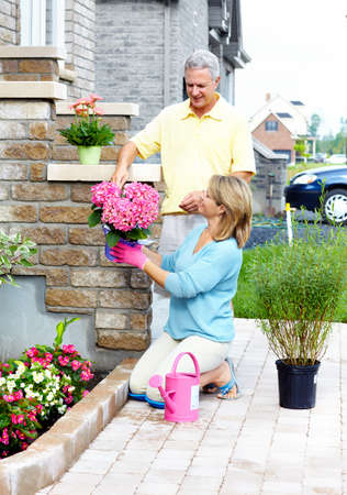 Gardening senior couple  photo