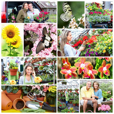 Gardening people collage  photo