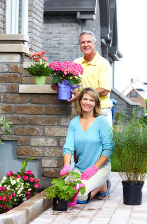 Gardening senior couple Stock Photo - 18763749