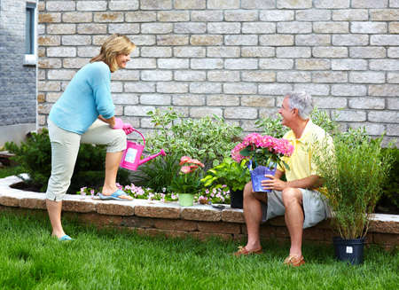 Gardening senior couple  Stock Photo - 18763761