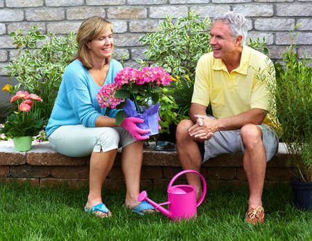 Gardening senior couple  Stock Photo
