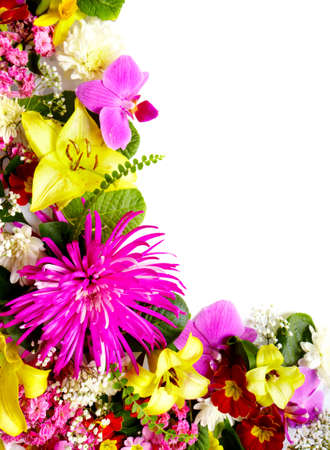 Floral greeting card with beautiful flowers Stock Photo - 18840982