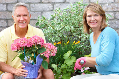 Gardening couple  photo