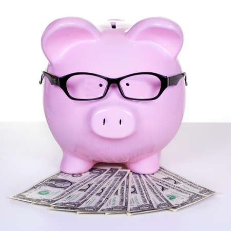 Piggy bank with money  Stock Photo - 18840977