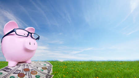 Piggy bank with money Stock Photo - 18840971
