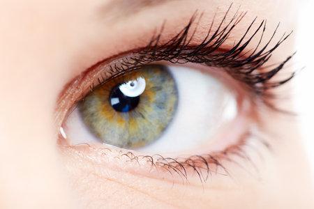 cilia: Woman eye  Stock Photo