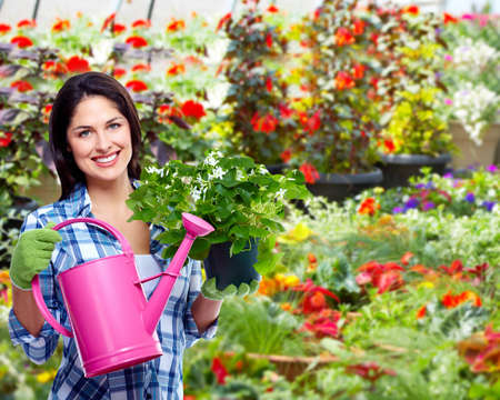 Gardening woman with plant  photo