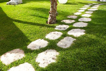 Walkway in a beautiful tropical garden Stock Photo - 20073083