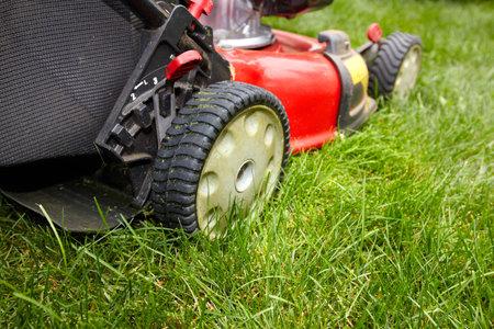Lawn mower. Фото со стока