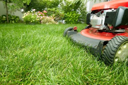 Lawn mower. Archivio Fotografico