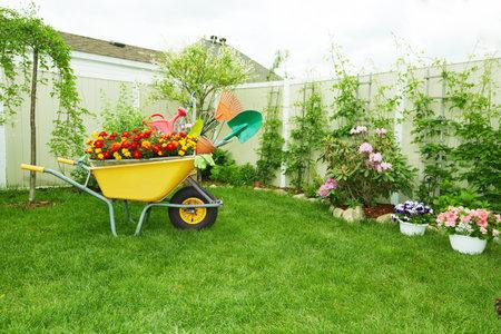Gardening tools.