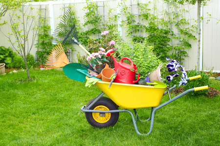 Gardening tools. Stock Photo - 37863470