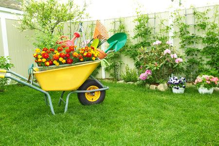Herramientas de jardinería. Foto de archivo - 38592487