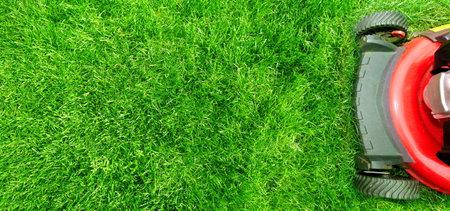 잔디 깎는 기계. 스톡 콘텐츠