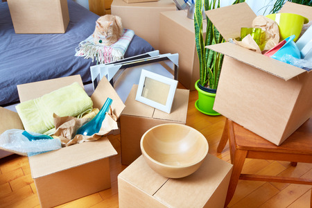 Bewegliche Kästen im neuen Haus. Immobilien-Konzept. Standard-Bild - 45284832