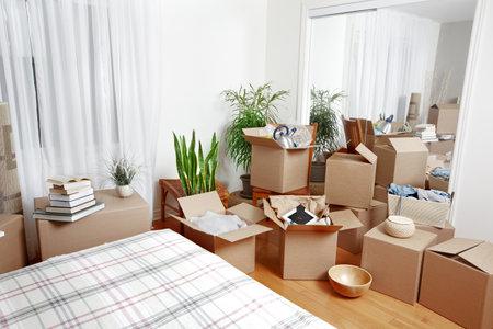 Bewegliche Kästen im neuen Haus. Immobilien-Konzept. Standard-Bild - 45284834