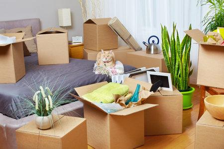새 아파트에서 상자 이동. 부동산 개념입니다. 스톡 콘텐츠 - 46626698