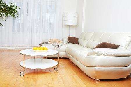 아름다운 아늑한 현대 아파트. 부동산 개념. 스톡 콘텐츠 - 47710556