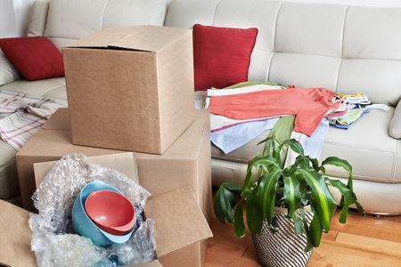새 아파트에서 상자 이동. 부동산 개념입니다. 스톡 콘텐츠 - 48269343