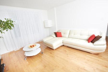 아름다운 아늑한 현대 아파트. 부동산 개념. 스톡 콘텐츠 - 48415254