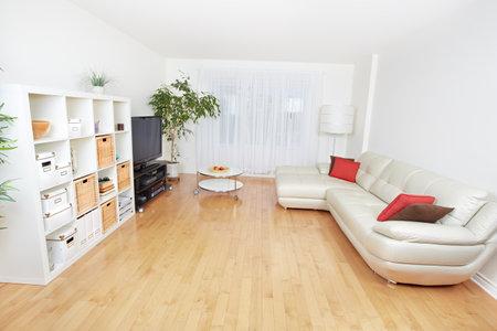 아름다운 아늑한 현대 아파트. 부동산 개념. 스톡 콘텐츠 - 49607210