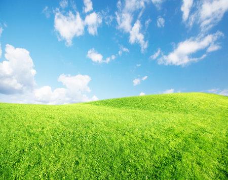Mooie natuur landschap achtergrond. Groen gras en blauwe lucht.